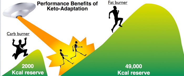 Athletes Consuming Ketogenic Diets Have the Fuel Reserves to Handily Outperform Those Following Typical High-Carb Diets