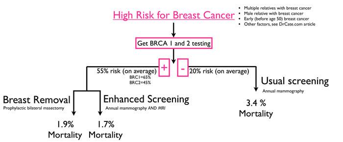 Angelina Jolie's Choice BRCA Treatment options