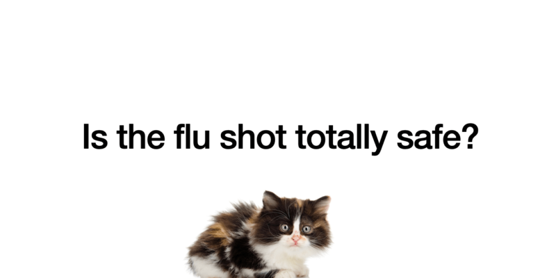 Influenza Vaccine Safety And Dangers